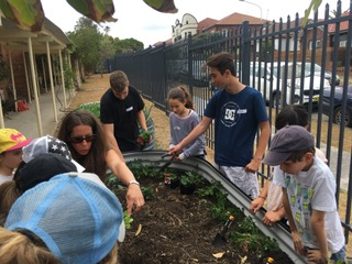 Connect4Good – how a simple vege garden can make a difference