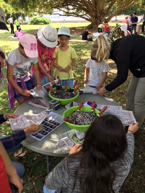8 volunteers 14+ to help with fun activities at the NSW Children's Week Picnic