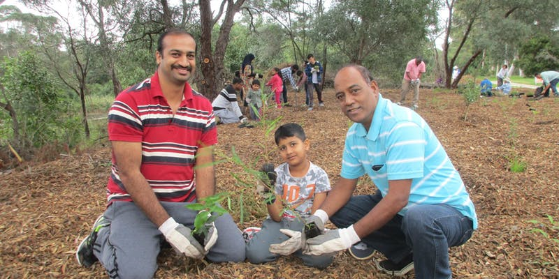 Family volunteering – help save critically endangered bushland